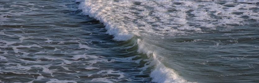 De l'eau de mer salée